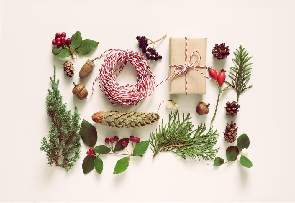 christmas-botanical-decorations