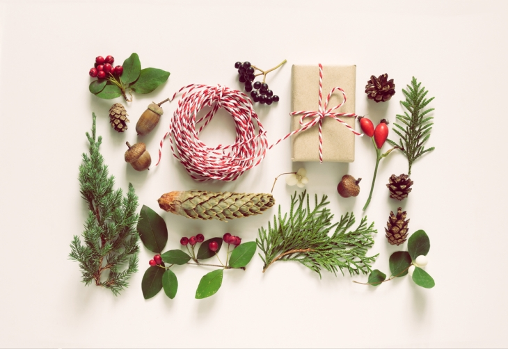 christmas-botanical-decorations